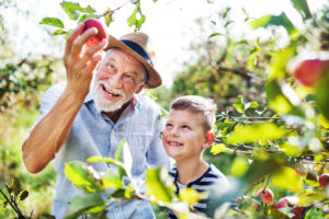 Apfelbaumpflanzaktion